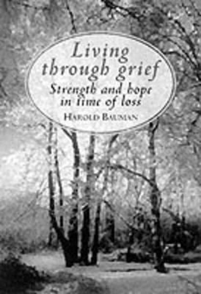 Picture of LION GIFT/LIVING THROUGH GRIEF GIFT ED