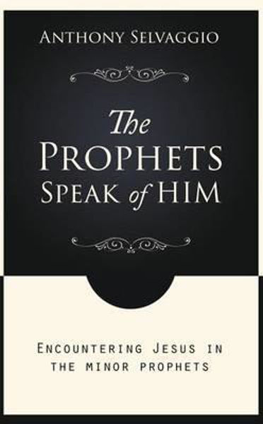 Picture of THE PROPHETS SPEAK OF HIM