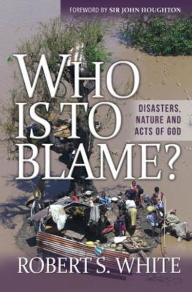 Picture of WHO IS TO BLAME?