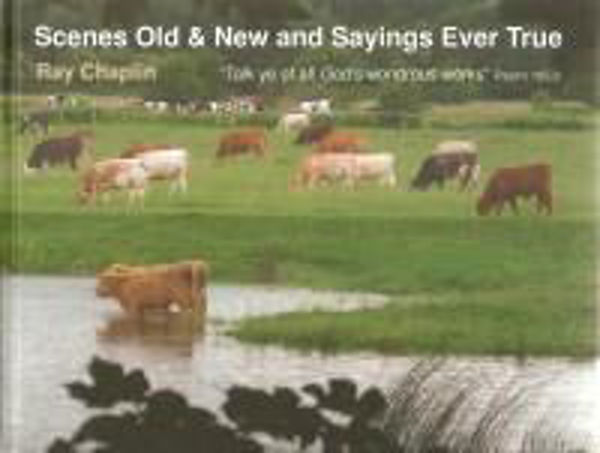 Picture of SCENES OLD & NEW Sayings ever True