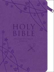 Picture of ESV ANGLICIZED COMPACT GIFT Purple zip Bible