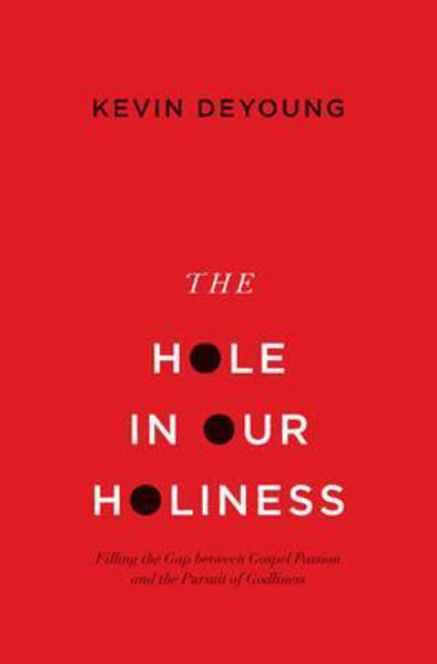 Picture of THE HOLE IN OUR HOLINESS pbk
