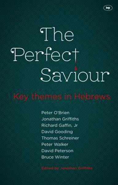 Picture of THE PERFECT SAVIOUR Themes in Hebrews