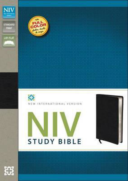 Picture of NIV 2011/STUDY BIBLE GENUINE LEATHER