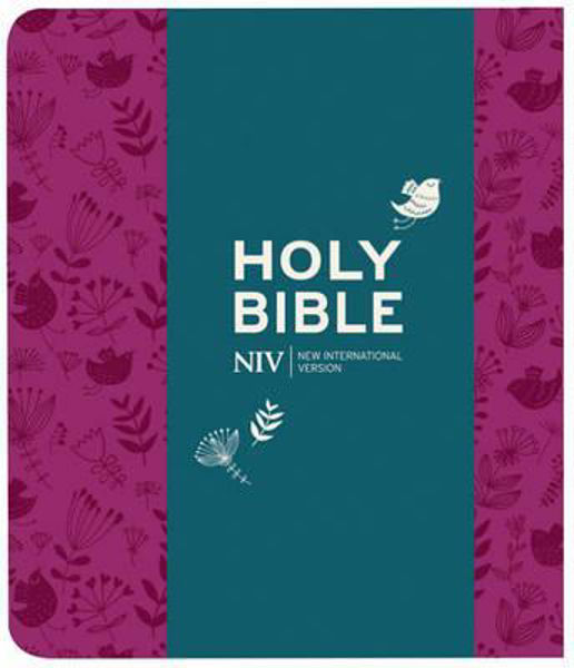 Picture of NIV 2011/JOURNALING BIBLE Red Soft-tone
