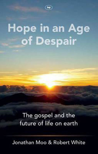 Picture of HOPE IN AN AGE OF DESPAIR