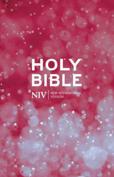Picture of NIV 2011/Thinline paperback