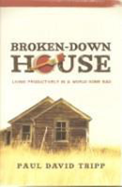 Picture of BROKEN-DOWN HOUSE