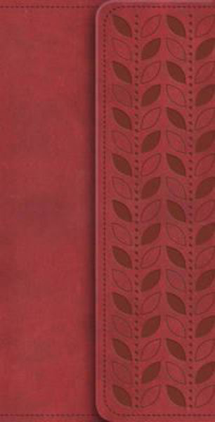 Picture of NIV 2011/DIARY Magnetic Clasp Cherry
