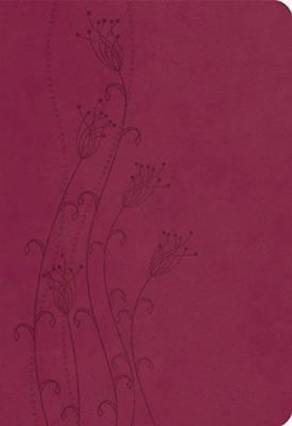 Picture of NKJV GIANT PRINT Reference Cranberry Lth