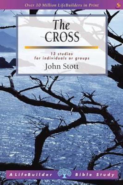 Picture of LIFEBUILDER/ THE CROSS