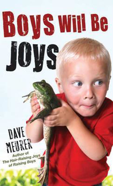 Picture of BOYS WILL BE JOYS