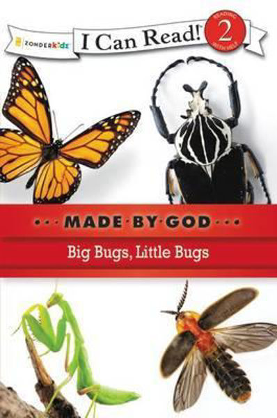 Picture of I CAN READ#2/BIG BUGS LITTLE BUGS