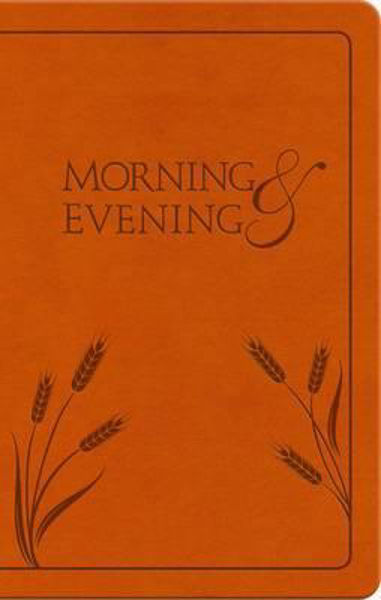 Picture of MORNING AND EVENING NIV HONEY