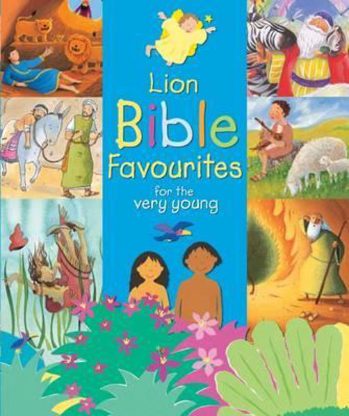 Picture of LION BIBLE FAVOURITES
