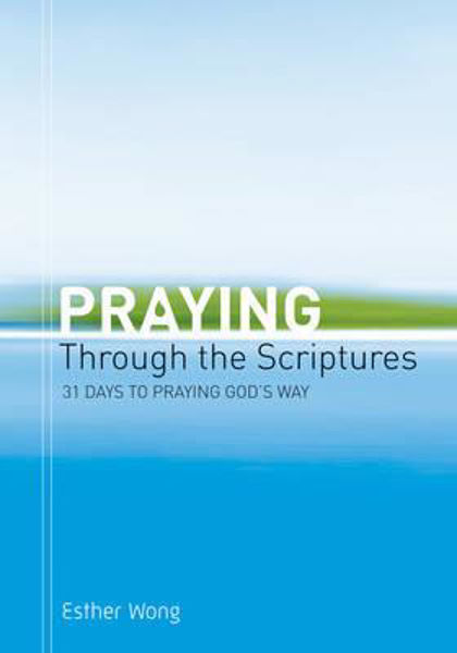 Picture of PRAYING THROUGH THE SCRIPTURES 31 DAYS