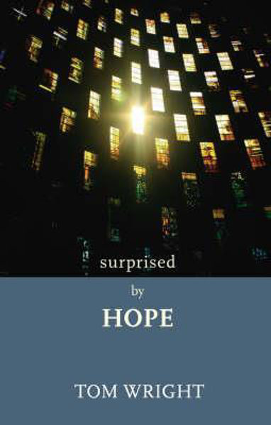 Picture of SURPRISED BY HOPE