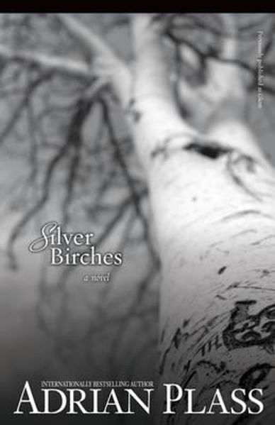 Picture of SILVER BIRCHES