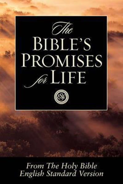 Picture of THE BIBLES PROMISES FOR LIFE