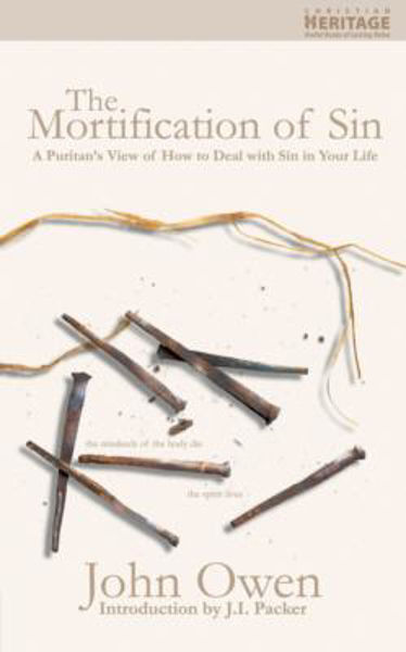 Picture of THE MORTIFICATION OF SIN
