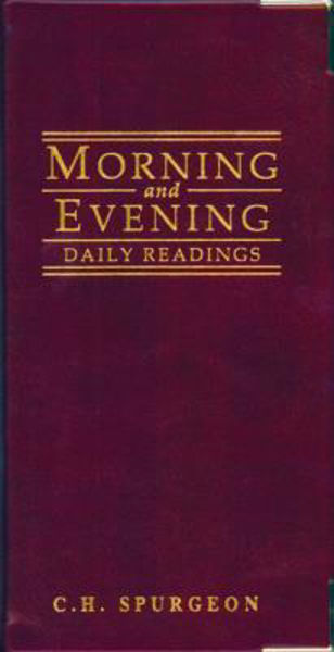 Picture of MORNING AND EVENING POCKET DIARY RED