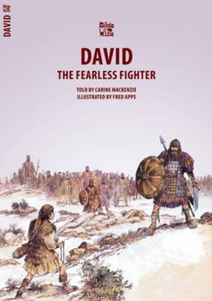 Picture of BIBLE WISE/DAVID The Fearless Fighter