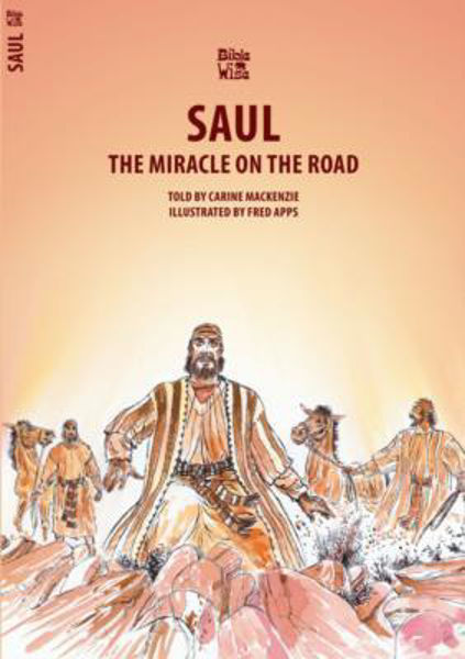 Picture of BIBLE WISE/SAUL The miracle on the road