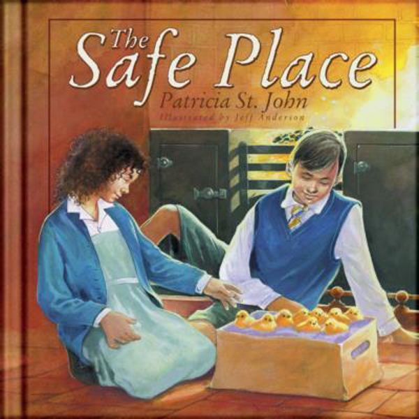 Picture of THE SAFE PLACE