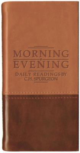 Picture of MORNING AND EVENING matt tan/burgundy