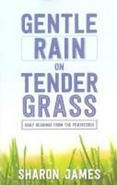 Picture of GENTLE RAIN on TENDER GRASS