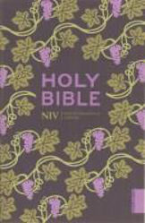 Picture of NIV 2011 CLASSIC PAPERBACK