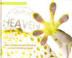 Picture of MADE IN HEAVEN God's amazing design