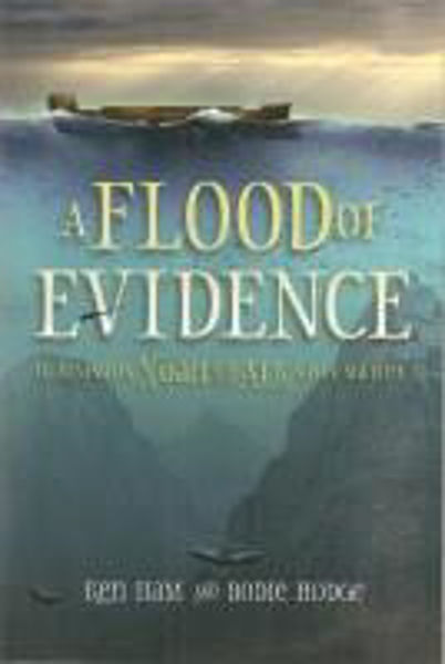 Picture of A FLOOD OF EVIDENCE Noah and the Ark