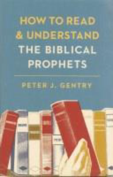 Picture of How to read/understand BIBLICAL PROPHETS