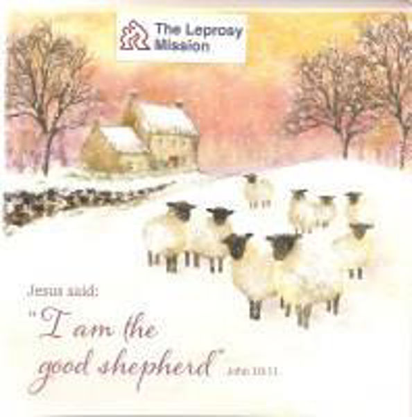 Picture of 2021 TLM 10 CARDS Good shepherd