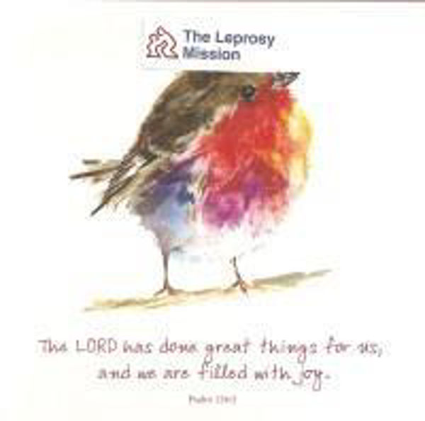 Picture of 2021 TLM 10 CARDS Joyful robin
