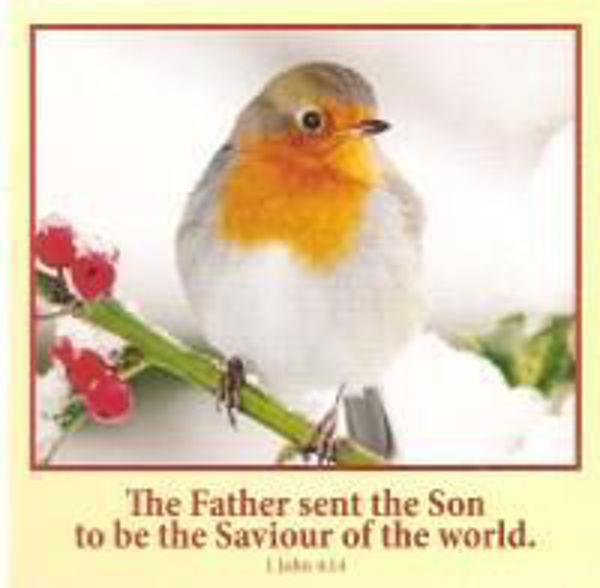 Picture of 2020 10 GOSPEL CARDS/Saviour of the World