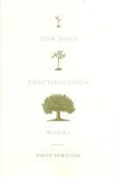 Picture of HOW DOES SANCTIFICATION WORK?