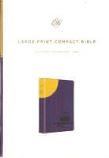 Picture of ESV Large Print COMPACT MOONLIGHT OWL