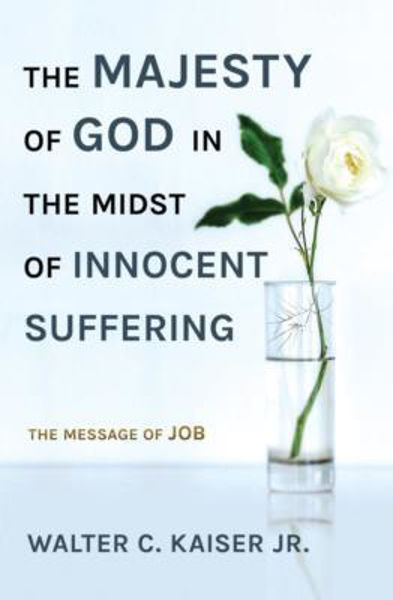 Picture of THE MAJESTY OF GOD IN THE MIDST OF INNOCENT SUFFERING - message of Job