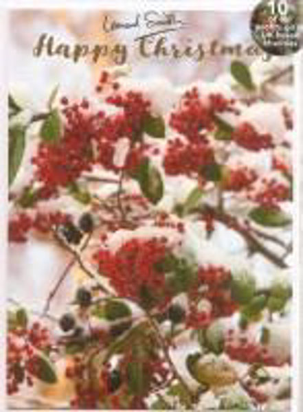 Picture of 2021 LENS 5 CARDS Snowy red berries