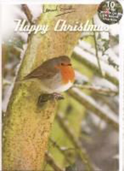 Picture of 2021 LENS 5 CARDS Robin in tree
