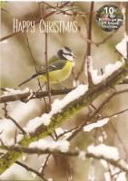 Picture of 2020 LENS 5 CHRISTMAS CARDS Blue Tit