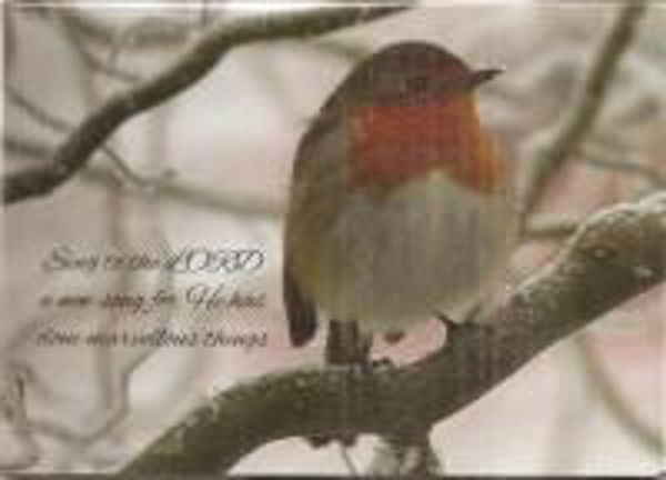 Picture of 2020 GM 10 CARDS Robin on snowy branch